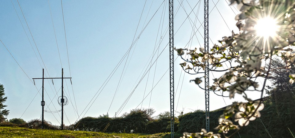 power transmission lines in meadow with no overgrown vegetation